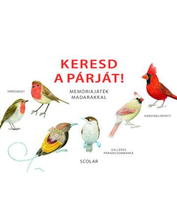 Keresd a párját! – Memóriajáték madarakkal