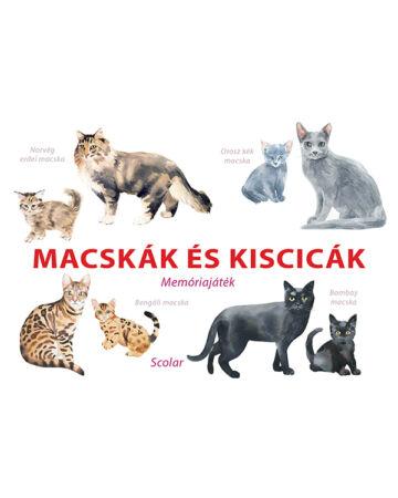 Macskák és kiscicák – Memóriajáték