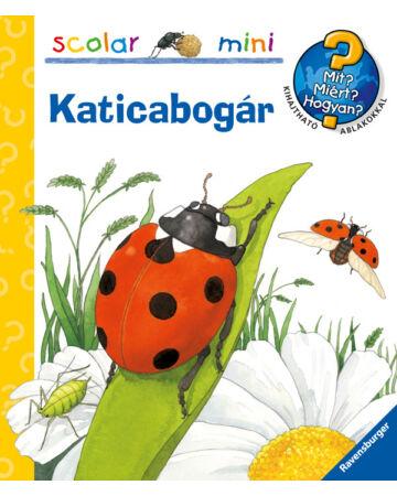 Katicabogár