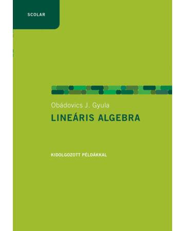 Lineáris algebra példákkal (2., javított kiadás)