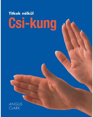 Csi-kung